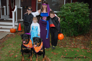 Trick or Treat!! The ghouls and goblins are out and we are ready to take our kids trick or treating