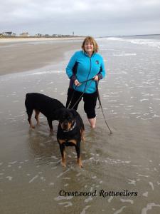 Doreen, Libby and Jaedyn at the beach in North Carolina